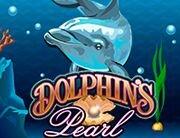 Dolphins_180х138