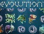Evolution_180х138