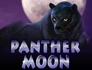 Panther_Moon_180х138