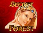 Secret_Forest_180х138